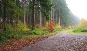 Randonnée A pied VILLERS-COTTERETS - le GR11A  dans la Forêt de Retz  - Photo 128