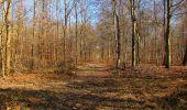 Trail Walk PIERREFONDS - en forêt de Compiègne_24_Tournantes sur le Voliard et sur la Fortelle_chaussée Brunehaut - Photo 93