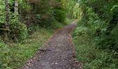 Trail Walk Andenne - sclaigneaux 1 - Photo 5