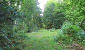 Randonnée A pied VILLERS-COTTERETS - le GR11A  dans la Forêt de Retz  - Photo 112