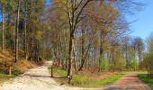 Randonnée A pied VILLERS-COTTERETS - le GR11A  dans la Forêt de Retz  - Photo 80