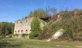 Randonnée Marche Namur - Balade dans les anciennes carrières d'Asty-Moulin - Photo 3