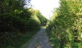 Trail Walk DAMPLEUX - en forêt de Retz_80_sur la Route Tortue et la Route Droite - Photo 121