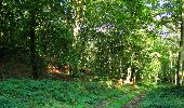 Randonnée Marche HARAMONT - en forêt de Retz_79_08_2019_vers Taillefontaine et Retheuil par les lisières - Photo 19