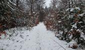 Trail Walk Sainte-Ode - rando lavacherie 29/12/2020 - Photo 11