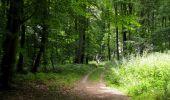 Randonnée Marche SAINT-JEAN-AUX-BOIS - en forêt de Compiègne_2_ruines gallo-romaines de Champlieu_les Petits Monts - Photo 108