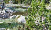 Trail Walk ARAGNOUET - les lacs - Photo 5