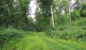Randonnée Marche LONGPONT - en foret de Retz_ 41_Longpont_Vertes Feuilles_AR - Photo 166