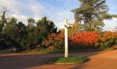 Trail Walk SAINT-JEAN-AUX-BOIS - en forêt de Compiègne_19_le Puits d'Antin_les Mares St-Louis_La Muette - Photo 7