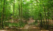 Randonnée Marche HARAMONT - en forêt de Retz_79_08_2019_vers Taillefontaine et Retheuil par les lisières - Photo 92