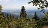 Randonnée Marche MUHLBACH-SUR-BRUCHE - Le Jardin des Fées par la cascade de Soulzbach - Photo 22