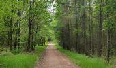 Trail Walk ERNOLSHEIM-LES-SAVERNE - 2019-05-30 Marche Mt St Michel Ernolsheim les Saverne Reel - Photo 15