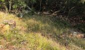 Randonnée Marche BARGEMON - Le bois de ciste - Photo 3