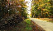 Randonnée Marche SAINT-JEAN-AUX-BOIS - en forêt de Compiègne_32_11_2019_les Tournantes de la Muette et sous la Tête Saint-Jean - Photo 188