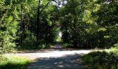 Trail Walk DAMPLEUX - en forêt de Retz_80_sur la Route Tortue et la Route Droite - Photo 239