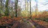 Randonnée A pied VILLERS-COTTERETS - le GR11A  dans la Forêt de Retz  - Photo 36