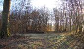 Trail Walk SAINT-JEAN-AUX-BOIS - en forêt de Compiègne_33_12_2019_les Tournantes de l'étang Saint-Jean et des Prés Saint-Jean - Photo 54