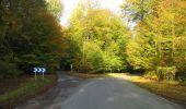 Trail Walk RETHEUIL - en forêt de Retz_76_dans les forêts de Retz et de Compiègne - Photo 73