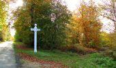 Randonnée Marche SAINT-JEAN-AUX-BOIS - en forêt de Compiègne_32_11_2019_les Tournantes de la Muette et sous la Tête Saint-Jean - Photo 186