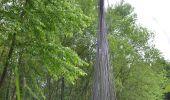 Randonnée Vélo électrique Gesves - Boucle Vélo (de ville ou électrique) Sentiers d'Art sur Gesves - Photo 3
