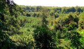 Trail Walk DAMPLEUX - en forêt de Retz_80_sur la Route Tortue et la Route Droite - Photo 248