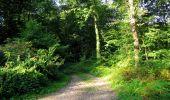 Randonnée Marche HARAMONT - en forêt de Retz_79_08_2019_vers Taillefontaine et Retheuil par les lisières - Photo 15