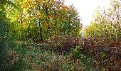 Randonnée Marche SAINT-JEAN-AUX-BOIS - en forêt de Compiègne_32_11_2019_les Tournantes de la Muette et sous la Tête Saint-Jean - Photo 176