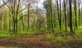 Randonnée A pied VILLERS-COTTERETS - le GR11A  dans la Forêt de Retz  - Photo 100