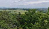 Trail Walk ERNOLSHEIM-LES-SAVERNE - 2019-05-30 Marche Mt St Michel Ernolsheim les Saverne Reel - Photo 23