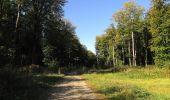 Trail Walk DAMPLEUX - en forêt de Retz_80_sur la Route Tortue et la Route Droite - Photo 130