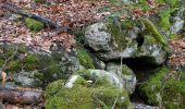 Trail On foot VIEUX-MOULIN - en forêt de Compiègne_23_la Grotte des Ramoneurs_le Mont Berny - Photo 116