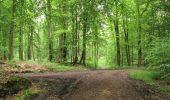 Randonnée A pied VILLERS-COTTERETS - le GR11A  dans la Forêt de Retz  - Photo 107
