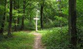 Randonnée Marche SAINT-JEAN-AUX-BOIS - en forêt de Compiègne_2_ruines gallo-romaines de Champlieu_les Petits Monts - Photo 113