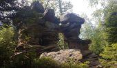 Randonnée Marche MUHLBACH-SUR-BRUCHE - Le Jardin des Fées par la cascade de Soulzbach - Photo 28