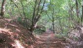 Randonnée Marche Andenne - seilles wanheriffe 4,75 km - Photo 2