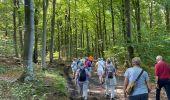 Randonnée Marche Jalhay - Sart - Photo 9