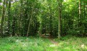 Randonnée Marche HARAMONT - en forêt de Retz_79_08_2019_vers Taillefontaine et Retheuil par les lisières - Photo 75