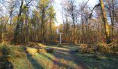 Trail Walk SAINT-JEAN-AUX-BOIS - en forêt de Compiègne_33_12_2019_les Tournantes de l'étang Saint-Jean et des Prés Saint-Jean - Photo 107