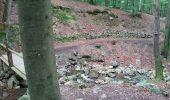 Randonnée Marche Spa - Spa berisienne  - Photo 3