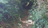Randonnée Marche LOCMELAR - ballade 270719 - Photo 10