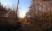 Trail Walk RETHEUIL - en forêt de Retz_76_dans les forêts de Retz et de Compiègne - Photo 10