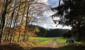 Randonnée Marche nordique Arlon - Wolkrange - Photo 6