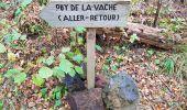 Trail Walk AYDAT - Les trois puys - Photo 7