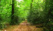 Randonnée Marche COYOLLES - en forêt de Retz_78_les rayons du Rond Capitaine - Photo 145