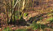 Trail On foot VIEUX-MOULIN - en forêt de Compiègne_23_la Grotte des Ramoneurs_le Mont Berny - Photo 30