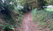 Randonnée Marche SAINT-POIS - Tours de la vallée de la sée - Photo 3