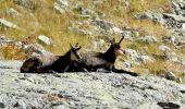 Randonnée Marche BELVEDERE - Mur des Italiens - Photo 1
