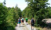 Randonnée Marche Vielsalm - Mesa 1 - Photo 4