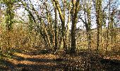 Trail On foot VIEUX-MOULIN - en forêt de Compiègne_23_la Grotte des Ramoneurs_le Mont Berny - Photo 51