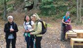 Trail Walk KINTZHEIM - Haut koenigsbourg Final - Photo 3